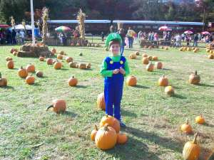 My Son at the Halloween Pumpkin Patch in Whittier, North Carolina, Great Smoky Mountains Railroad, October 2010