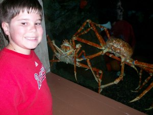 My Son with Spider Crabs, Georgia Aquarium, Atlanta, July 9, 2013